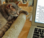 Photo of Sophie the Talking Torbie, the Super Muse feline to bestselling author Kathleen Ernst.