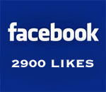 Graphic stating Facebook 2900 Likes.