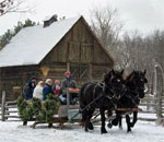 Horse-drawn bobsled pulling visitors through the snow at the Old World Wisconsin Christmas event.