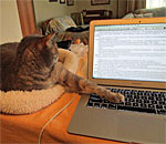 Sophie the Sophisticat helps bestselling author Kathleen Ernst edit a draft of the seventh book in the Chloe Ellefson Histori Sites mystery series, which under contract for release in fall 2016.