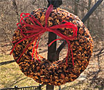 Photo of Christmas bird seeds wreath by bestselling author Kathleen Ernst.