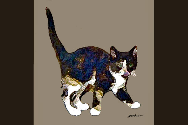 Chloe's calico kitten Olympia is based on my beautiful first cat. (Artwork by Scott Meeker from a photo by Kathleen Ernst.)