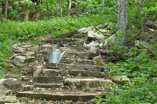 <strong>The Old Stone Steps.</strong> After the cisterns failed, the Betts family carry all their water--for drinking, cooking, cleaning, their garden, and livestock--up 150 feet from the lake to the lighthouse. (Photo by Scott Meeker.)